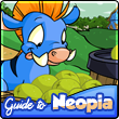 Take a tour of the entire planet of Neopia.
